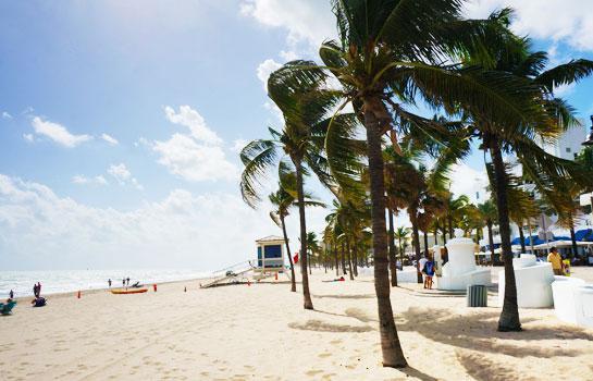 邁阿密 + 奧蘭多11天遊