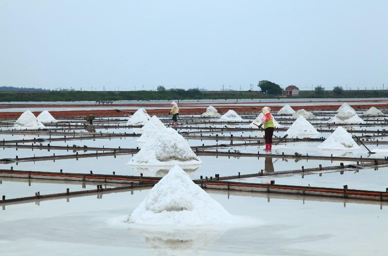 Beimen Jingzaijiao Pottery Shard Salt Fields