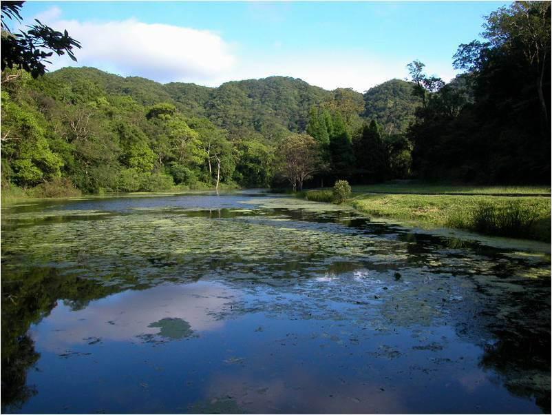 宜蘭福山植物園生態之旅